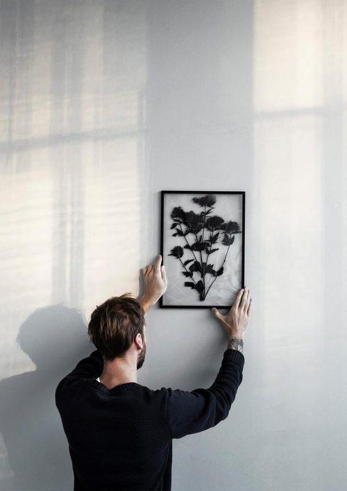 Eine Mann hängt ein schwarzen Bilderrahmen mit getrockneten Blumen an die weisse Wand. Der Bilderrahmen ist durchsichtig
